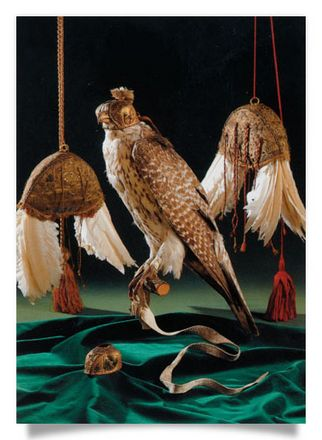 Feather Lure and Falcon with Falconhood